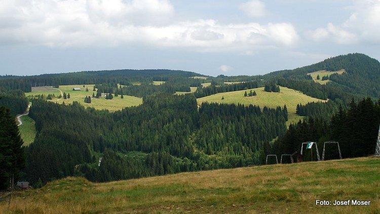 Freiländer Alm im Sommer 2007 bei den Klug‑Liften: Links mitte die Almhütte mit Haltstall, rechts derSchwarzkogel.